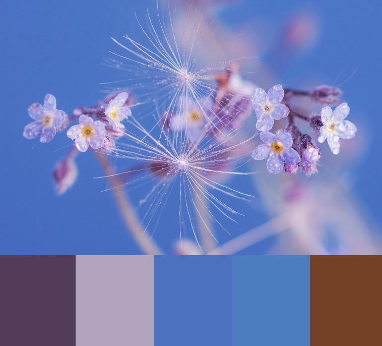 Varme farver i blomsternes verden