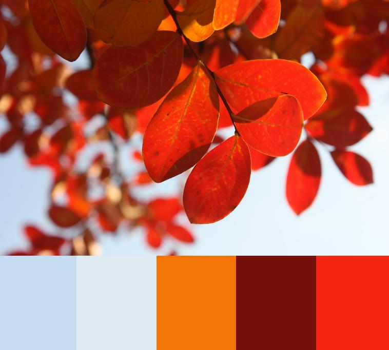 Blå farver sammen med varme efterårsfarver